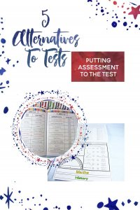 alternatives to school testing